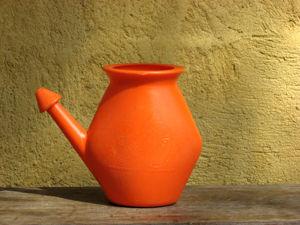 Neti Pots   small plastic