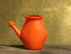Neti Pots - small plastic