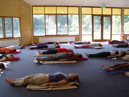 Yoga Nidra Practices for Creating Change
